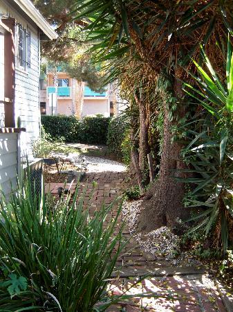 Sanborn Guest House: Pathway