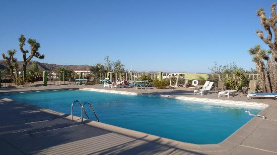 Joshua Tree Inn: Pool
