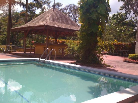 Mandeville Hotel: The beautiful Pool, cleaned daily