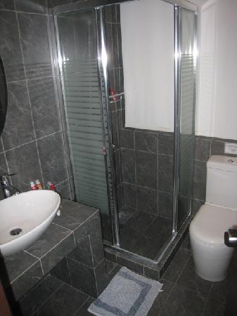 Athens Lotus Hotel: Updated bathrooms