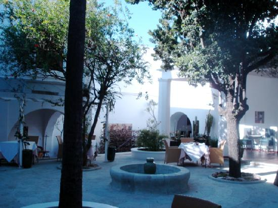 Casa Oaxaca: the courtyard