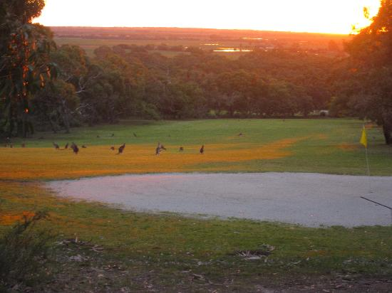 Aquila Mount Abrupt Eco Lodges: As the sun goes down over the golf course