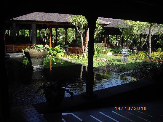 Padma Resort Legian : resort