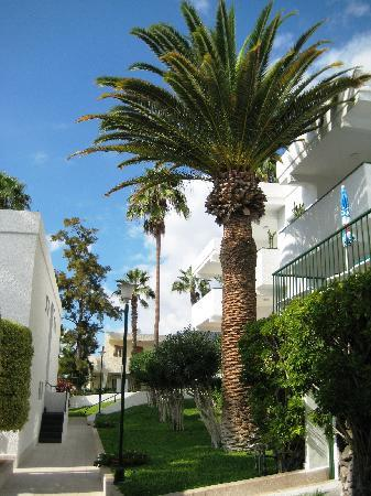 El Sombrero: well maintained gardens