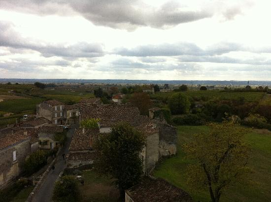 Hotel Au Logis des Remparts : vineyards beyond the vellage