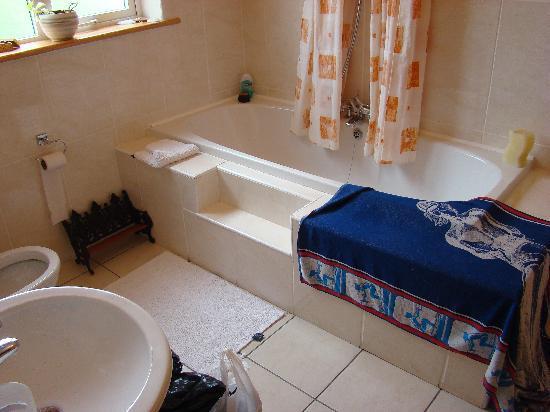 The Siding B & B : hot tub
