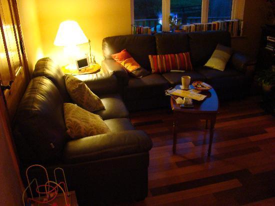 The Siding B & B : tv relax room pic 2
