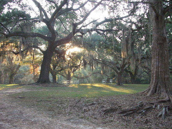 Woodville, MS : Beautiful morning