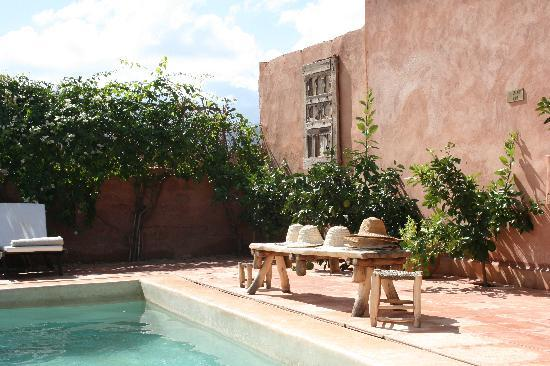 Kasbah Bab Ourika : by the pool