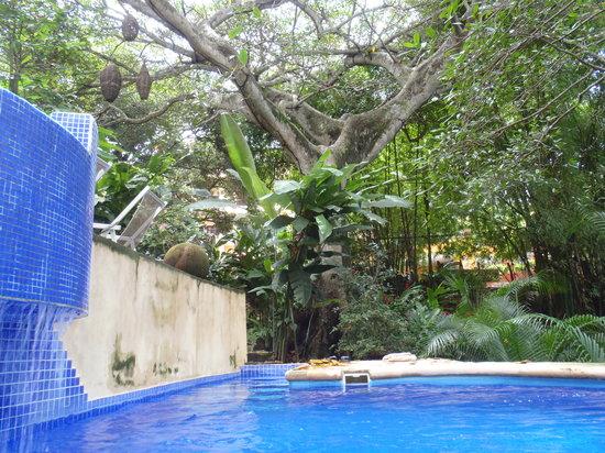 Xocotla