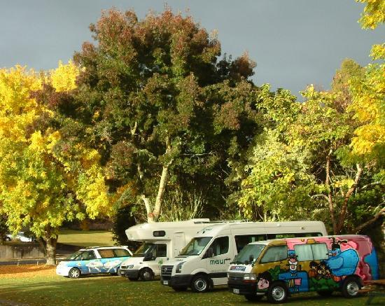 Camp Kiwi Holiday Park: Camp Kiwi in Otorohanga NZ