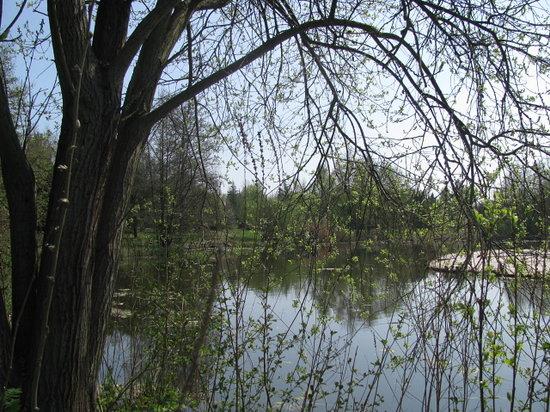 Oekologisch-Botanischer Garten