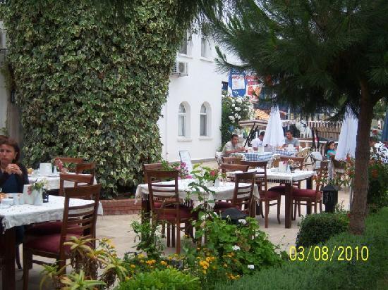 Aslan Hotel Turgutreis : aslan hotel bahce