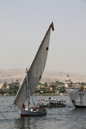 Mara House: Feluca on the Nile