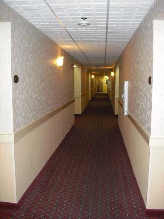 Hampton Inn Columbus South : 1st floor hallway