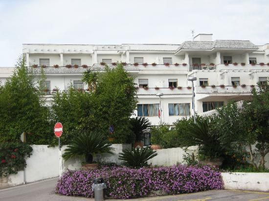 Hotel Sakura : Hotel