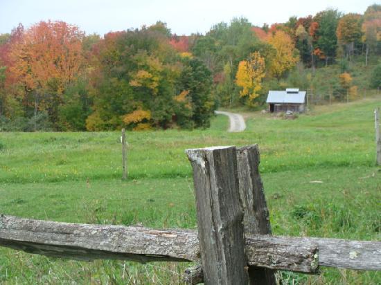 Cliff Haven Farm B&B: the sugarhouse