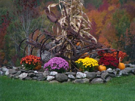Cliff Haven Farm B&B: Fall colors