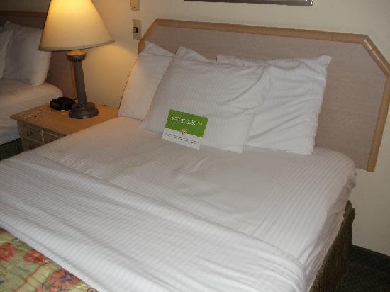 La Quinta Inn Tampa Near Busch Gardens: sheets