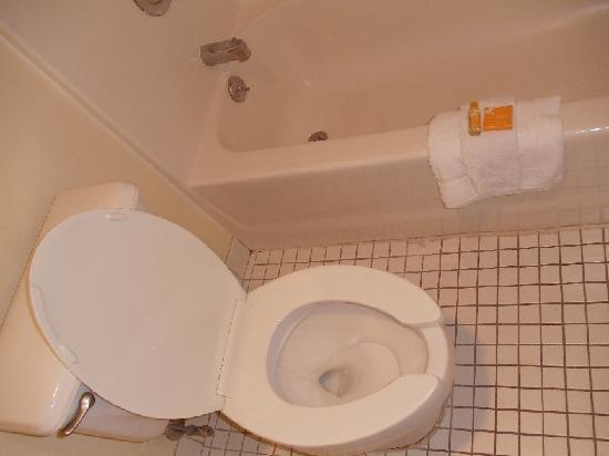 La Quinta Inn Tampa Near Busch Gardens: toilet