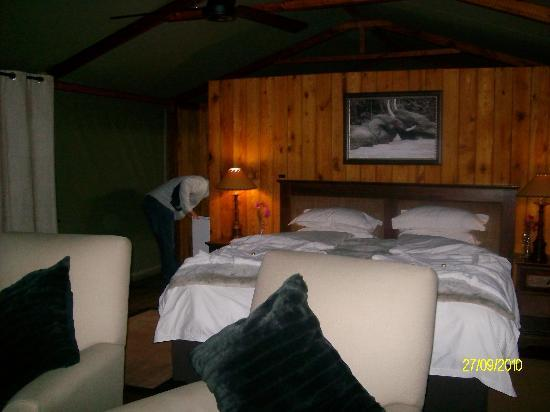 Addo Elephant Lodge and Safaris: Luxury Rooms