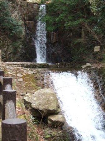 Tsuzumigataki Park