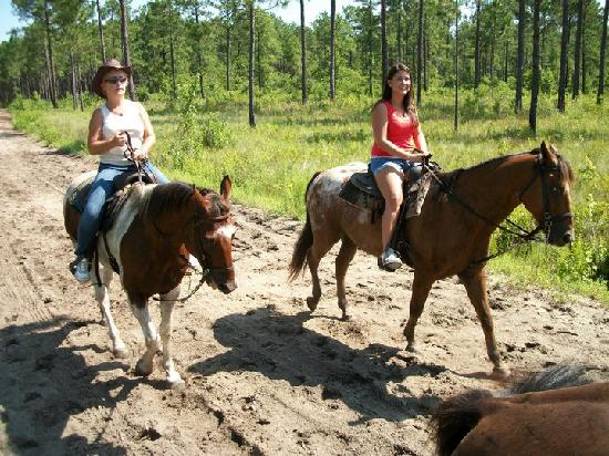 Horseback Riding Of Myrtle Beach Nature Preserve