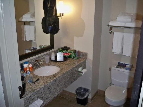 Holiday Inn Express Augusta North: Sink (my stuff is in there)