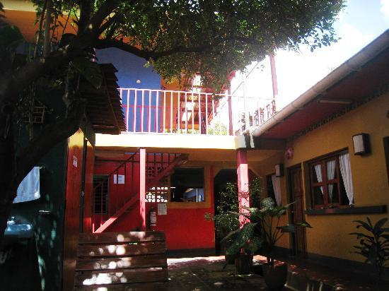 Hostal La Tortuga Booluda: Courtyard
