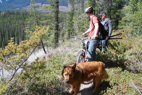 Nipika Mountain Resort: Lyle & Rufus working on the trails