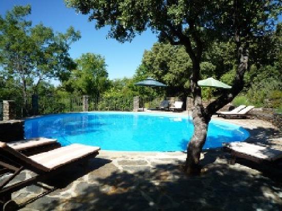Sierra Nevada National Park, Spania: Pool