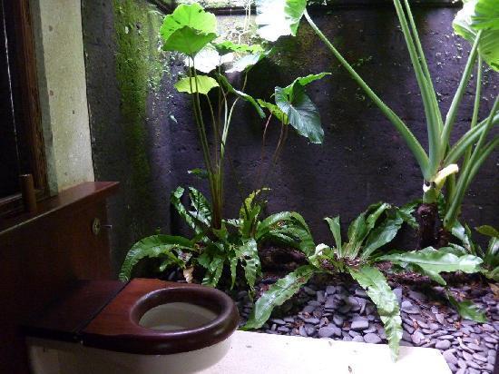 COMO Shambhala Estate : Toilette outside