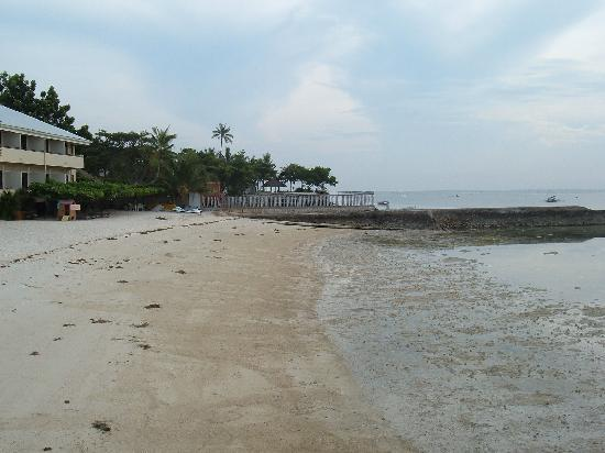 Coella Tropical Beach Hotel View