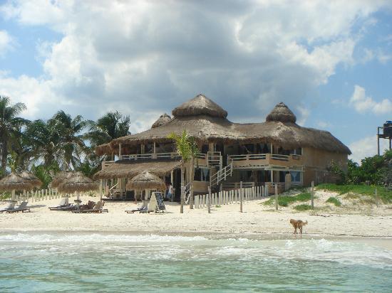 The beach picture of villa las estrellas tulum for Villas tulum