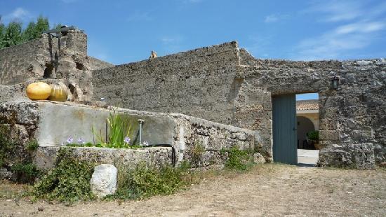 Tricase, Itália: Masseria Uccio - Esterno