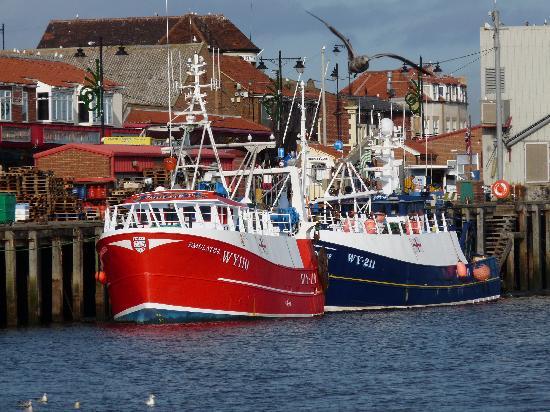 Victoria's Bed & Breakfast: The harbour