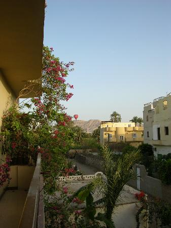 Senmut Luxor B&B: Vue de la chambre balcon