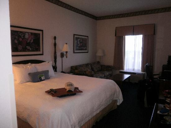 Hampton Inn and Suites Raleigh/Cary-I-40 (PNC Arena): king room on first floor