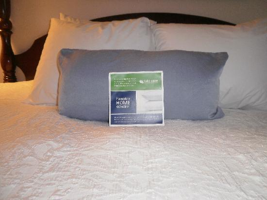 Hampton Inn and Suites Raleigh/Cary-I-40 (PNC Arena) : hampton king bed