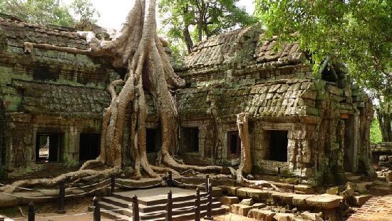 Garden Village Guesthouse: Angkor Wat Tombraider.