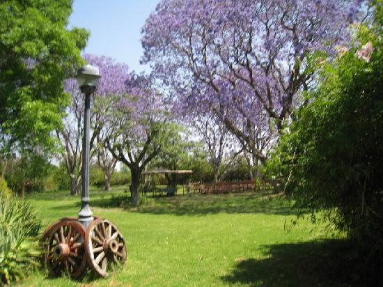 Hacienda Tzintzimeo: BELLOS JARDINES