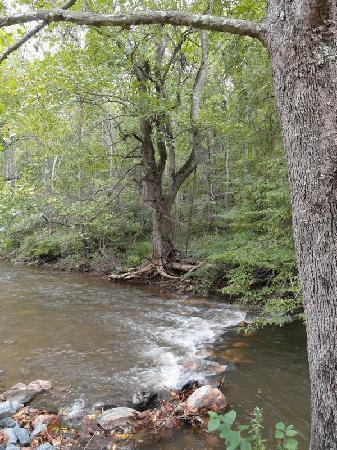 Mountain Rose Inn: The creek on the property