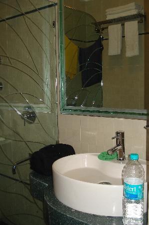 Hotel Suba Palace : Bathroom shot 2