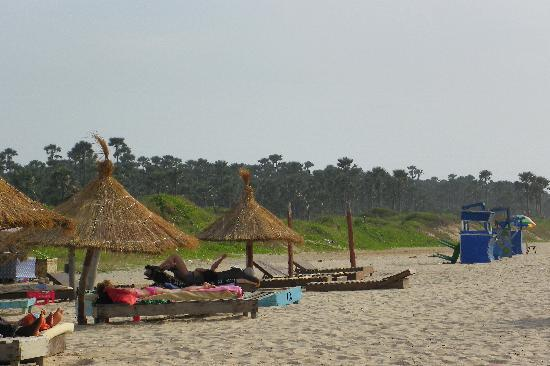 Voodoo Cafe: beach view along bijilo forest