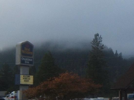 Best Western Oakridge Inn: Morning at the hotel