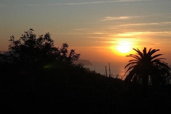 Podere Don Peppe 1884: Vista dal Podere su Capri
