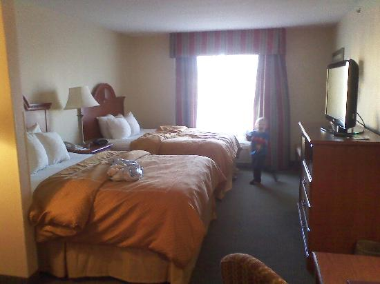 Comfort Suites: two queen-sized beds