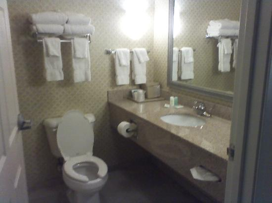 Comfort Suites Mount Vernon: bathroom