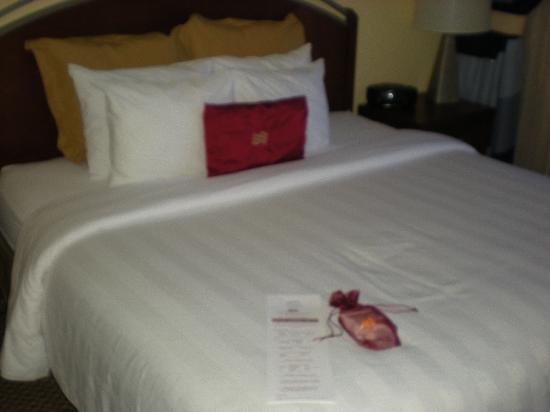 Crowne Plaza Arlington Suites : Suite