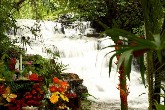 Cascadas Farallas Waterfall Villas: Waterfall and Wedding Alter